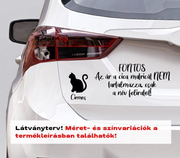 Több színben és méretben cica név matrica autómatrica, laptop matrica, villanykapcsoló matrica látványterv